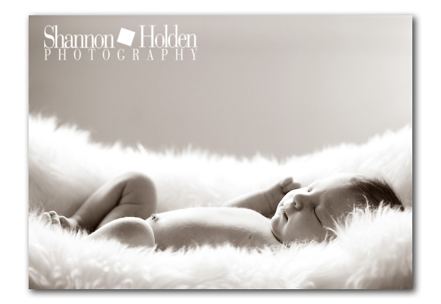Cute ideas for newborn photos - JustMommies Message Boards